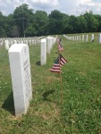 Cemetery Row Profile